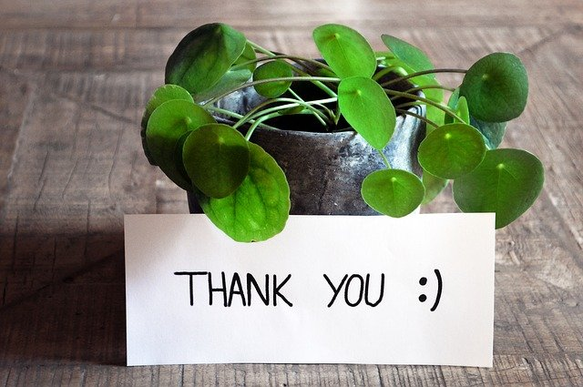 Tell someone how much you appreciate them or say thank you! The power of Gratitude