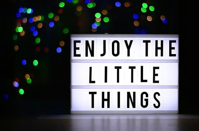 Gratitude is enjoying the little things and not taking things for granted