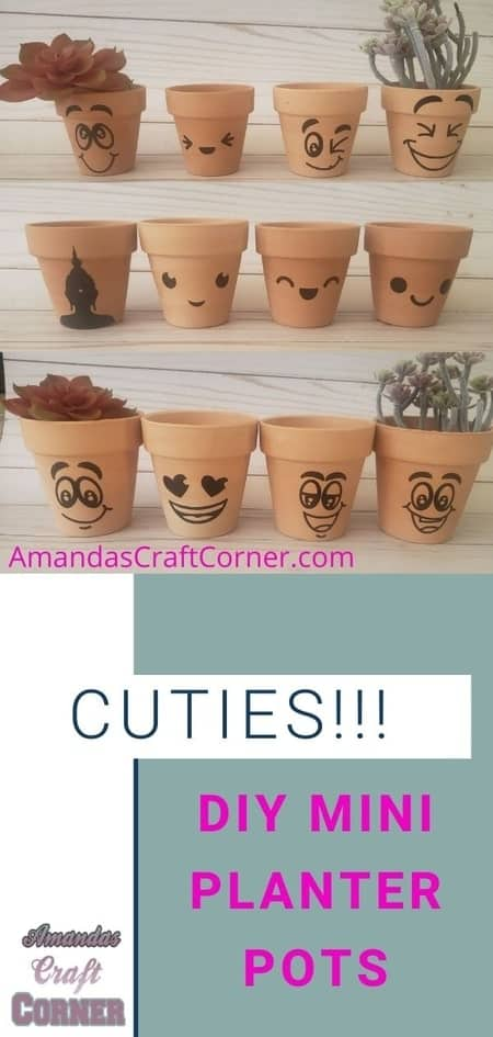 Lets create these CUTIES!!! Smiley Face Mini Planter Pots- DIY